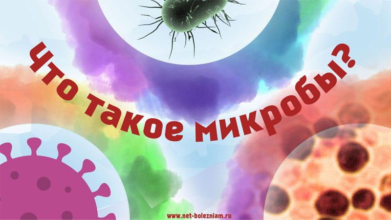 Что такое микробы?