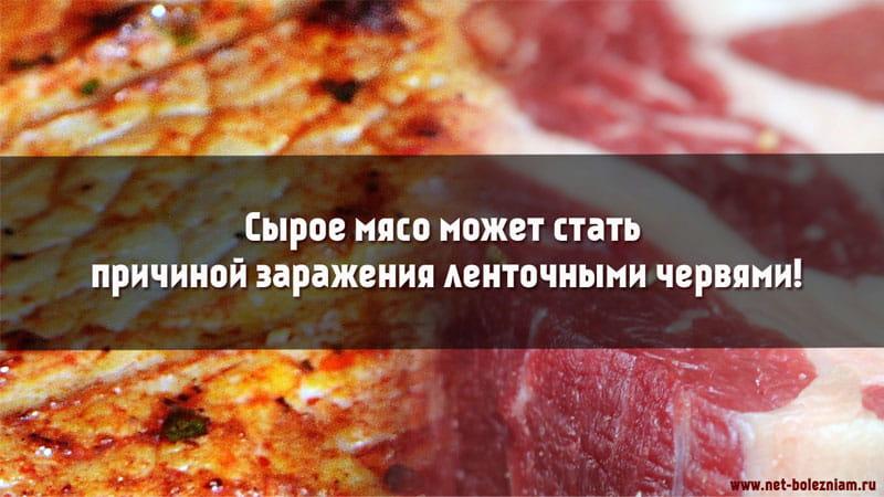 Сырое мясо может быть причиной заражения ленточными червями!