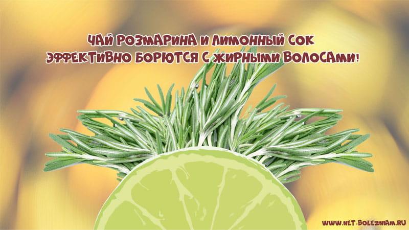 Чай розмарина и лимонный сок эффективно борются с жирными волосами!