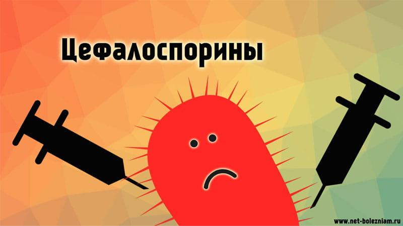 Что такое цефалоспорины?