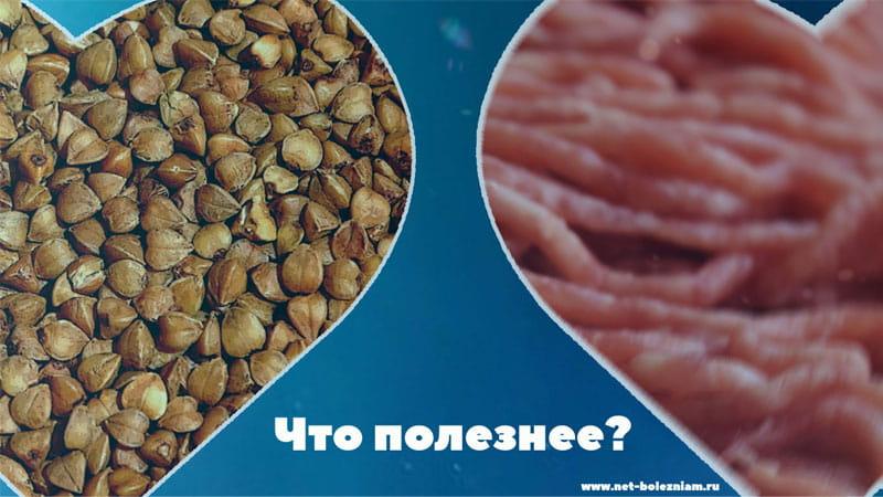 Что полезнее: Гречка или мясо?