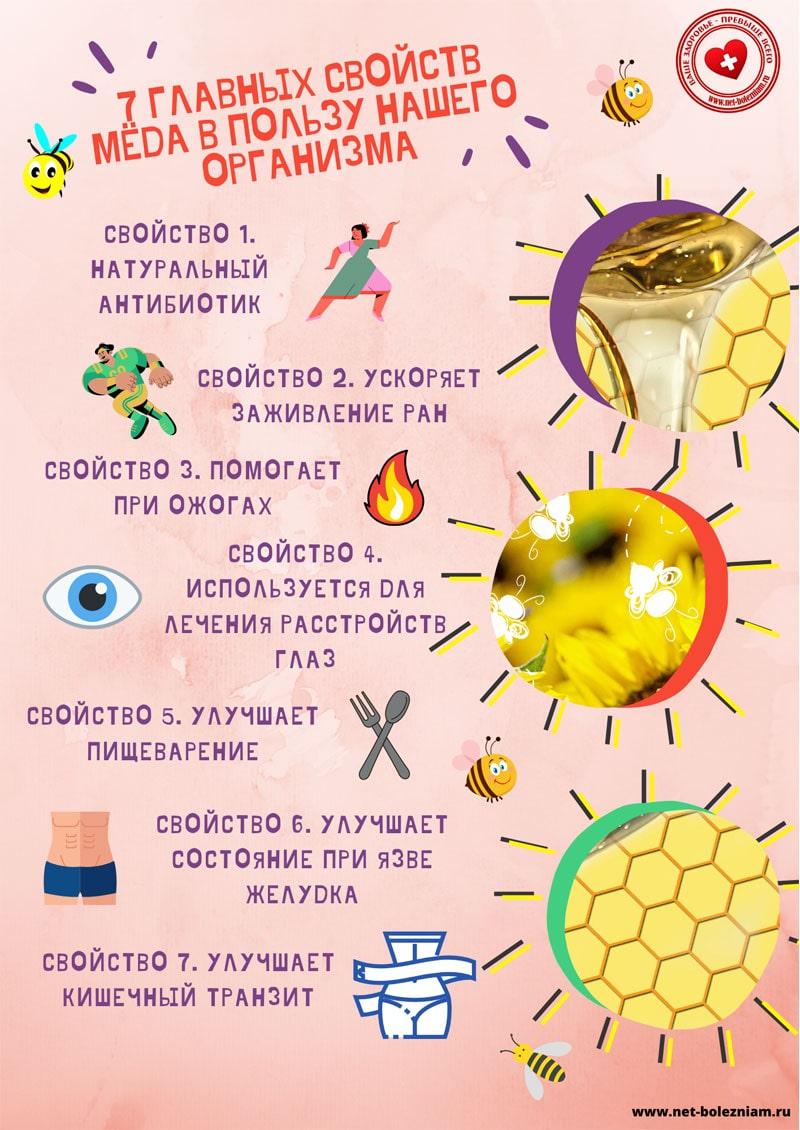 7 главных свойств мёда в пользу нашего организма